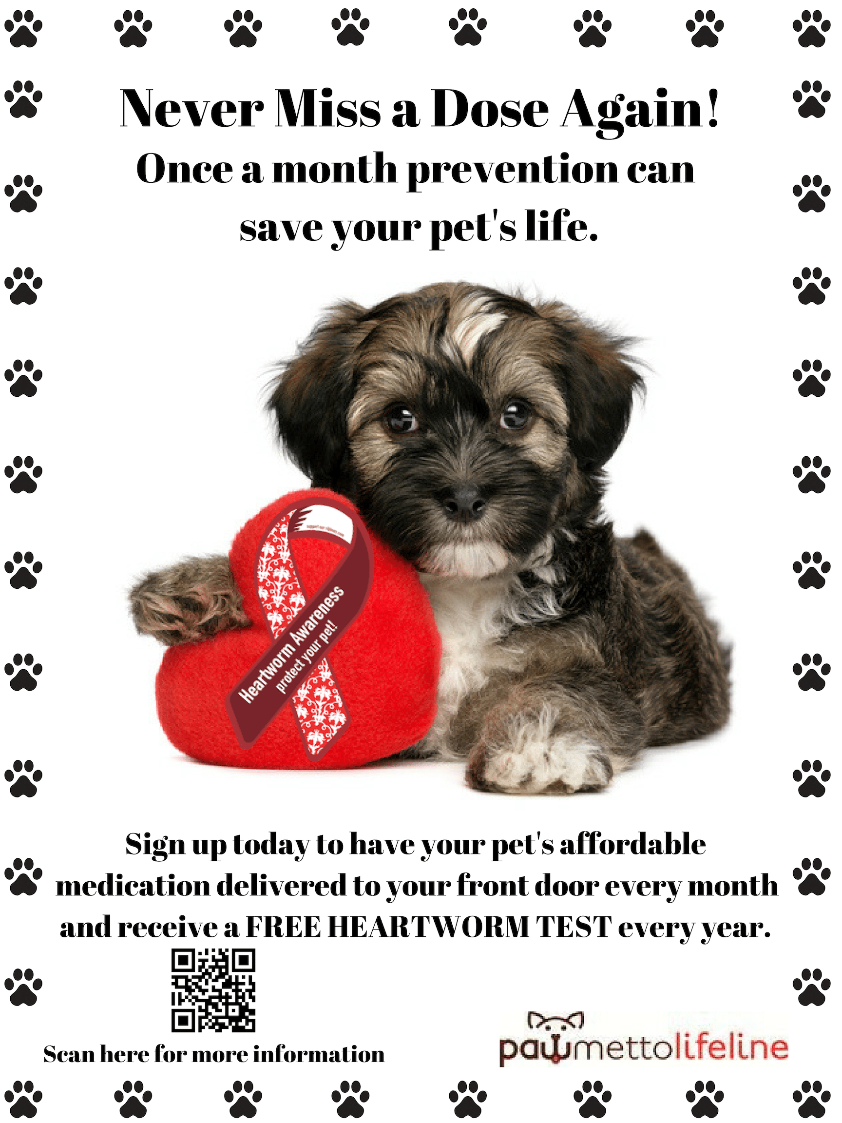 heart worm prevention ad