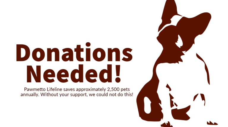 donations needed pawmetto lifeline